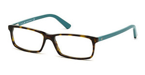 Web Eyewear WE5174 056 havanna