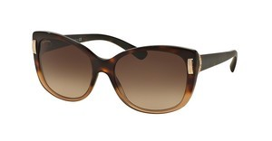 Bvlgari BV8170 536213 BROWN GRADIENTBROWN HAVANA GRADIENT
