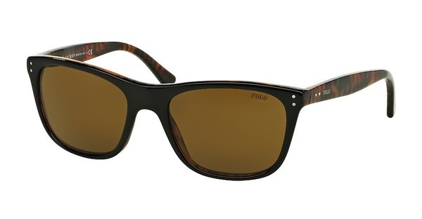 Polo PH4071 538373 BROWNTOP BLACK ON HAVANA JERRY
